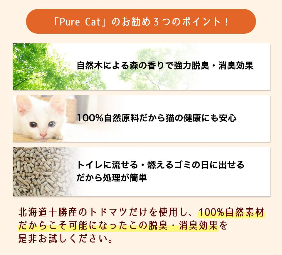 Pure Catのおすすめ3ポイント