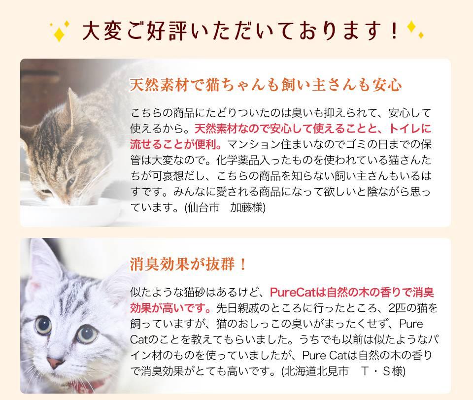 Pure Cat利用者の声1