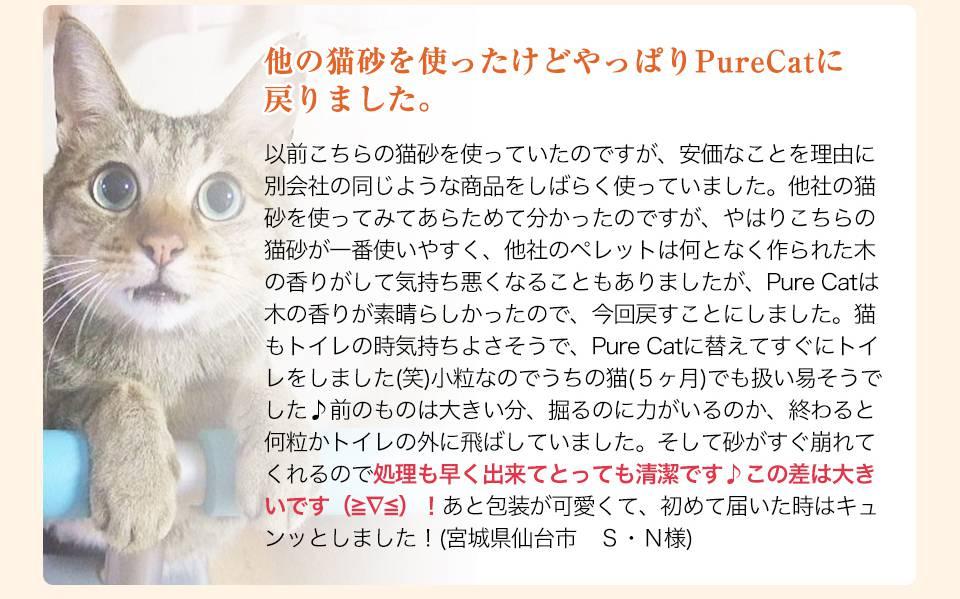 Pure Cat利用者の声4