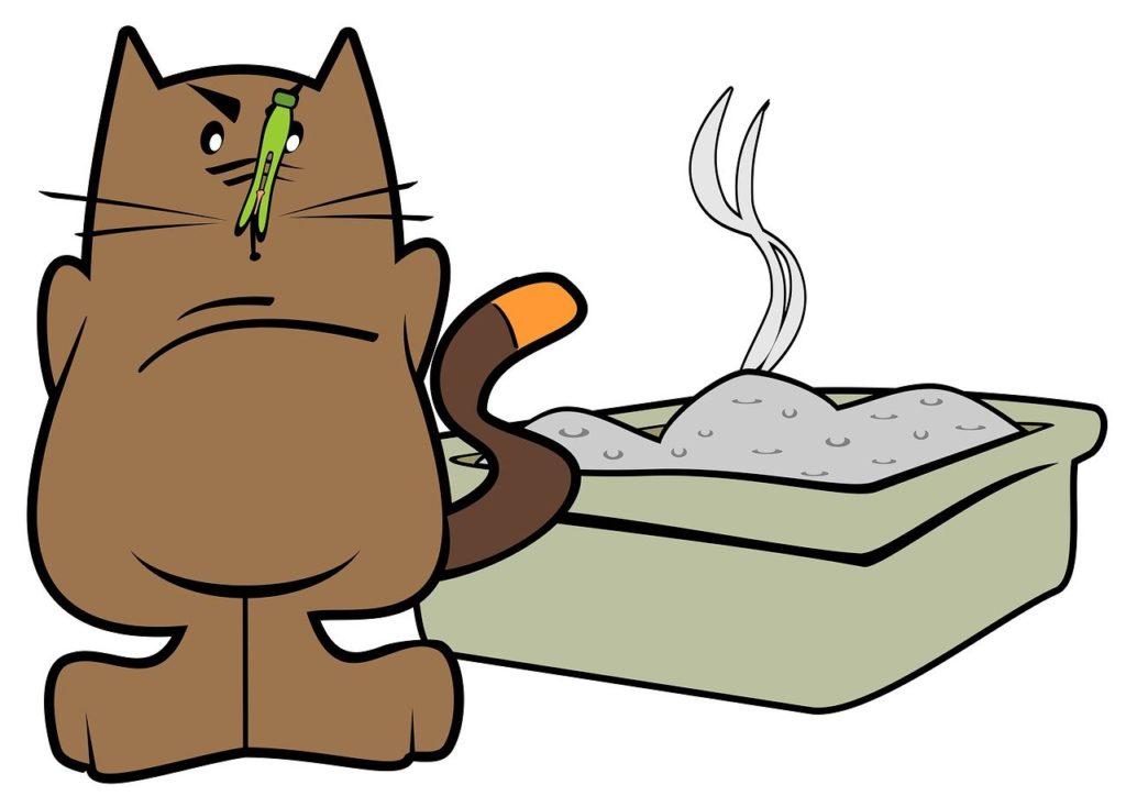 シリカゲルの猫砂は取り換え頻度が少なくて楽ちん
