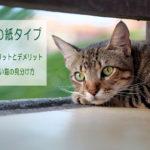 猫砂の紙タイプ 特徴やメリットとデメリット